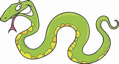 Snake Cartoon Snakes Cobra Stuff Illustration Angry