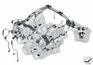 2010 Bmw X6 M E71 Engine Wiring Harness  Engine Module