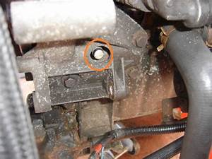 Distribution Ford Fiesta : distribution fiesta diesel 1l 8de 1995 ford m canique ~ Gottalentnigeria.com Avis de Voitures