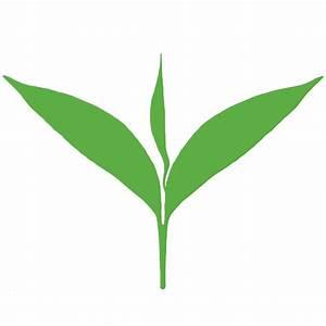 Tea Leaf - ClipArt Best