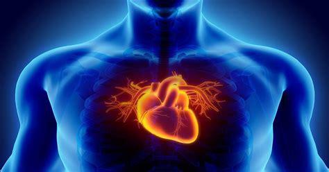 FitFatory iesaka: kā sportistiem uzlabot sirds veselību ...