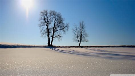 winter scenery high definition wallpapers wallpapersafari