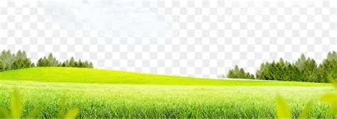 Grass Background Png Download
