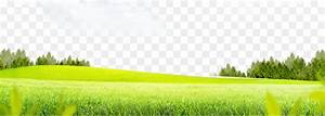Lawn Grass Meadow - Grass background png download - 1500 ...