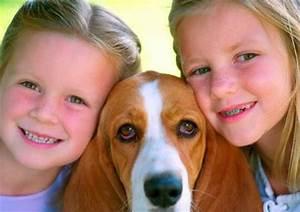 Haustiere Für Kinder : warum haustiere wichtig fuer die entwicklung der kinder sind tiere berichte ~ Orissabook.com Haus und Dekorationen