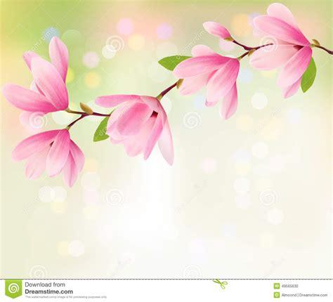 spring background  blossom brunch  pink flowers