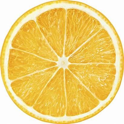 Orange Citrus Fruit Slice California Slices Disease