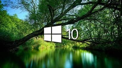 Windows Lake Simple Wallpapers Computers Computer Tree