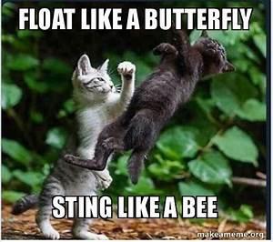 Float Like A Butterfly Sting Like A Bee Make A Meme