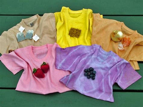 dye  shirt  veggies  fruits hgtv