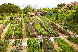 Awesome Garten Anlegen Tipps Images House Design Ideas Campuscinema Us