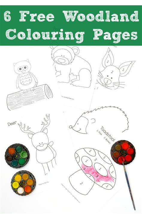 woodland colouring pages  red ted art