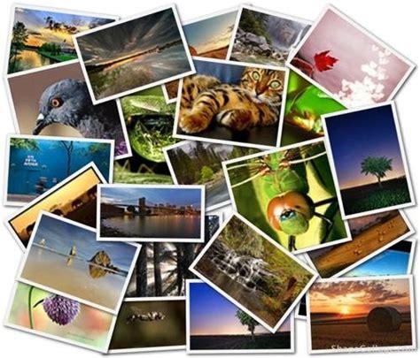 Crea Collages Con Tus Fotos En Shape Collage Online