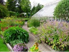 Herb Garden Design by Herb Garden In Farmleigh House Walled Garden Tim Austen Garden Designs