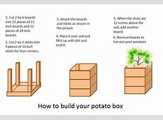 Love Potatoes? Grow Potatoes in a 4 Square Foot Vertical