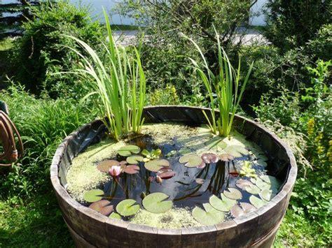Gehölze Für Kleine Gärten by Kleiner Garten In Arbeit Hausgarten Net