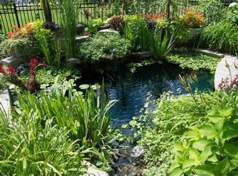 plante de bassin exterieur plantes filtrantes pour bassin de jardin bassin de jardin