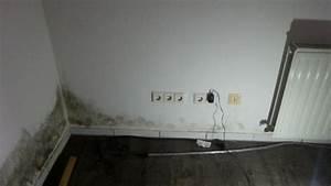 Feuchtigkeit Im Keller Beseitigen : feuchtigkeitsprobleme am haus schimmel durch ~ Watch28wear.com Haus und Dekorationen