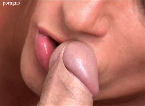 Showing Porn Images For close Up Gay blowjob Porn