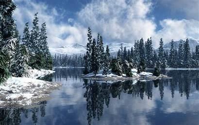 Forest Snow Desktop Snowy Screensavers Wallpapers Wallpapersafari