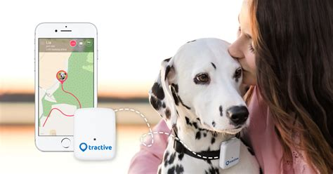 No. 1 Gps Tracker For Dogs And Cats