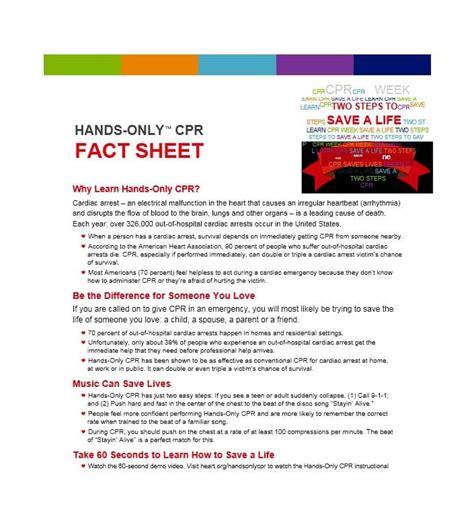 Fact Sheet Template 60 Beautiful Fact Sheet Templates Exles And Designs