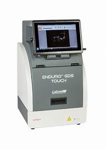gel documentation system for electrophoresis labnet With gel documentation system price list