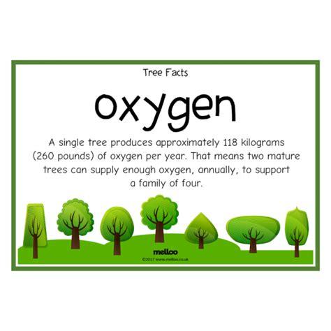 tree facts science ks ks
