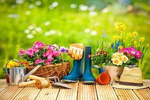 Blumen Für Den Balkon : blumen pflanzen wann wohin und welche ~ Lizthompson.info Haus und Dekorationen