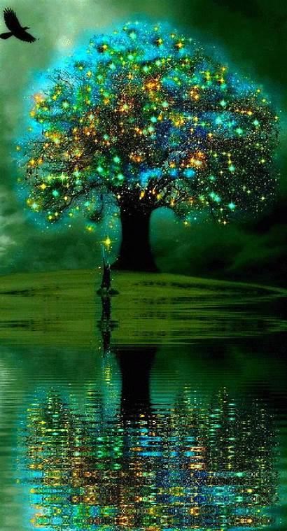 Fantasy Tree Fairy Landscape Lights Magic Away