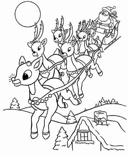Coloring Reindeer Pages Christmas Santa Sleigh Printable