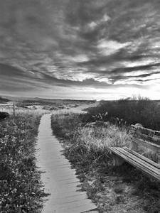 Winding Path In Black And White Photograph by Diane Valliere