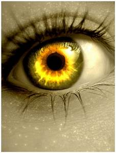 1000+ images about Cool Contact Lenses on Pinterest | Eye ...