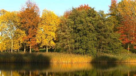 Garten Im Herbst Düngen by Was Bl 252 Ht Im Herbst Gartennatur