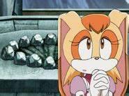 Vanilla the Rabbit (Sonic X)/Gallery   Sonic News Network ...