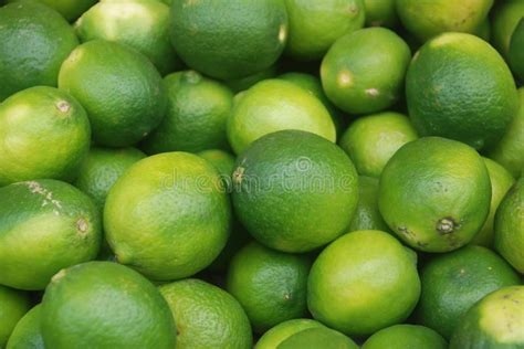 lemon fruit tropical yellow green lemon fruit aff
