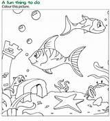Reading Coloring Fish Wordzila sketch template