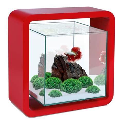 aquarium design poisson combattant 5 litres achat vente aquarium aquarium design