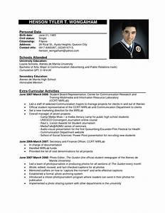 Sample Resume Format 21 Example Applying For Job