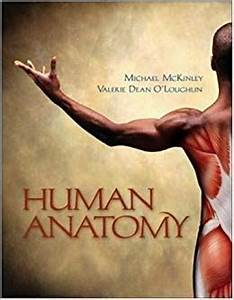 By Michael McKinley, Valerie O'Loughlin: Human Anatomy ...