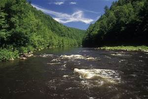 Jim Thorpe Is Full of History and Adventures!