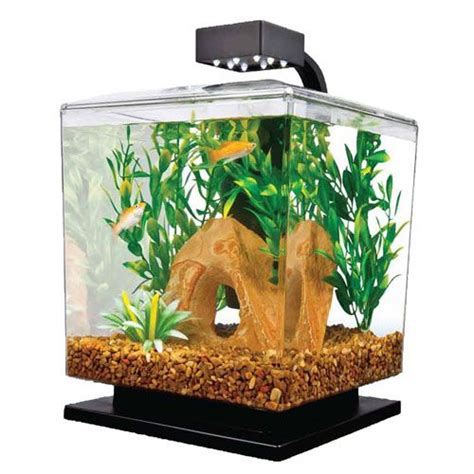 25 best ideas about cheap fish tanks on tank stand cheap cabinet hardware and