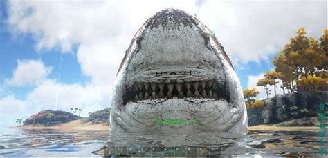 Ark Boat Race by Ark Survival Evolved Best Mods Rock Paper Shotgun