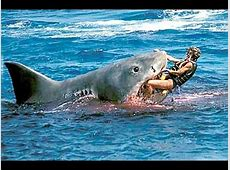 Man Saves Kids From Shark Attack! YouTube