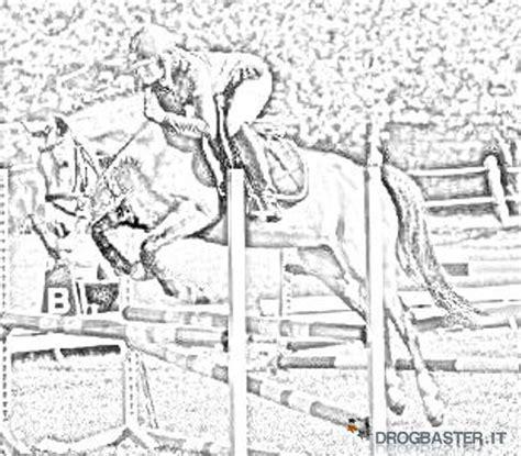 immagini di cavalli che saltano da colorare cavallo immagini e disegni da stare