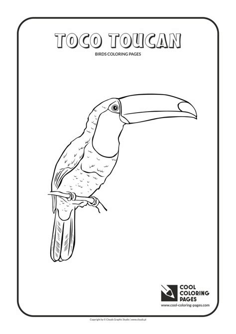 cool coloring pages toco toucan coloring page cool coloring pages  educational coloring