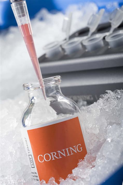 corning offers  cell culture  scale  solutions