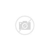 Image result for Mrs. Elizabeth WWF