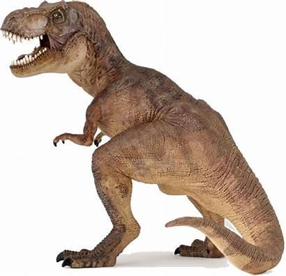 Dinosaur Transparent Rex Dinosaurs Trex Dino Toy
