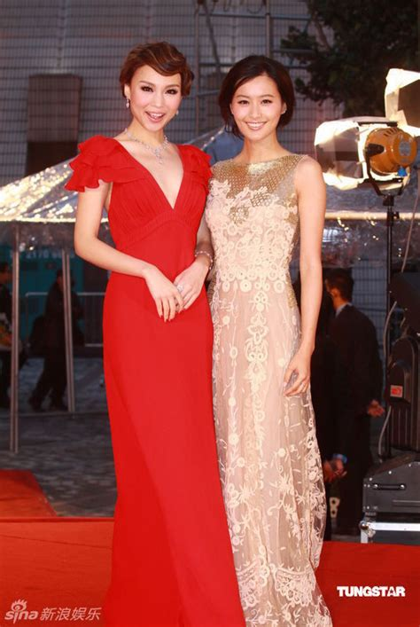 Roast Pork Sliced From A Rusty Cleaver 29th Hong Kong Film Awards Red Carpet Photos 1